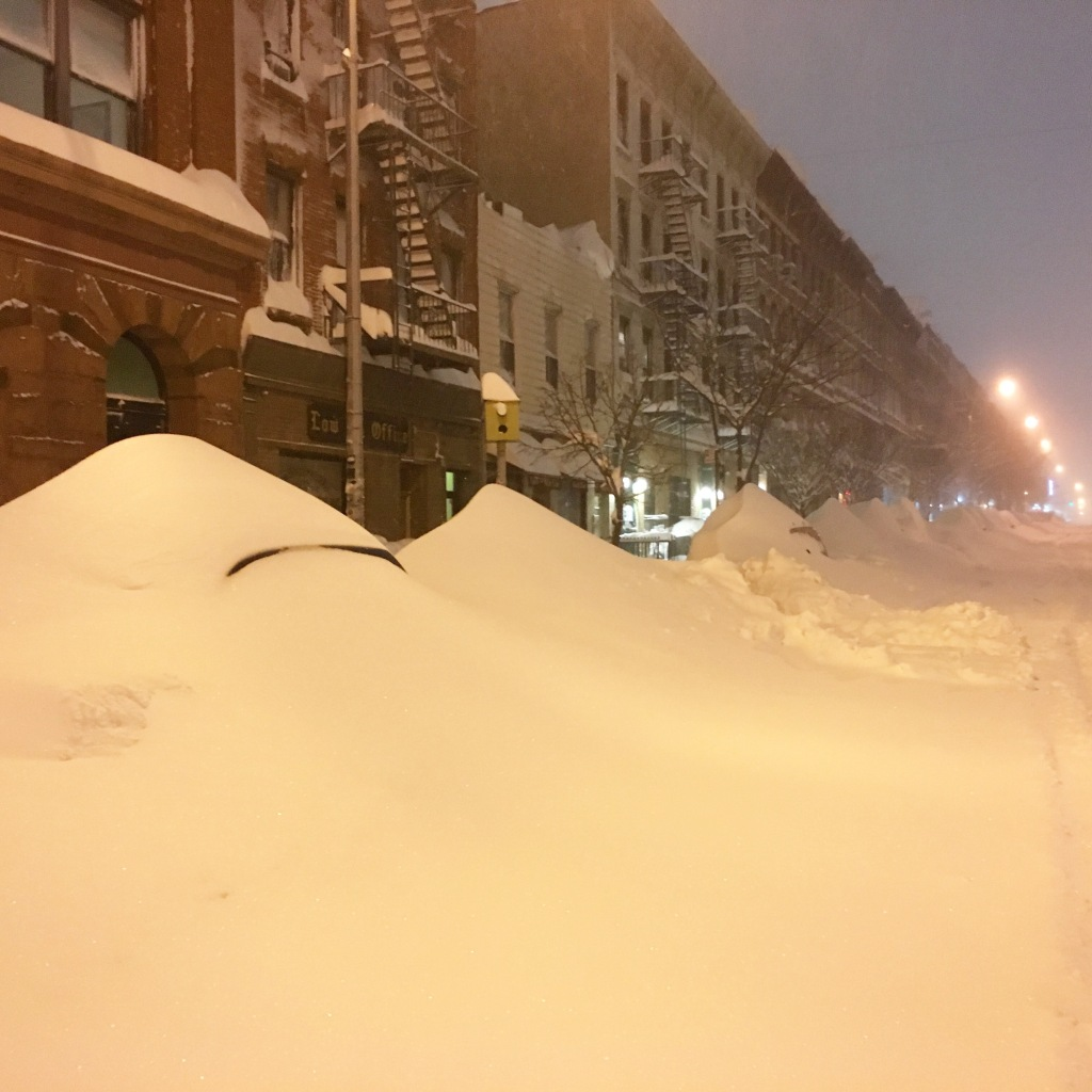 Over 3 feet of snow in 24 hours during the blizzard of 2016 - Brooklyn, NY