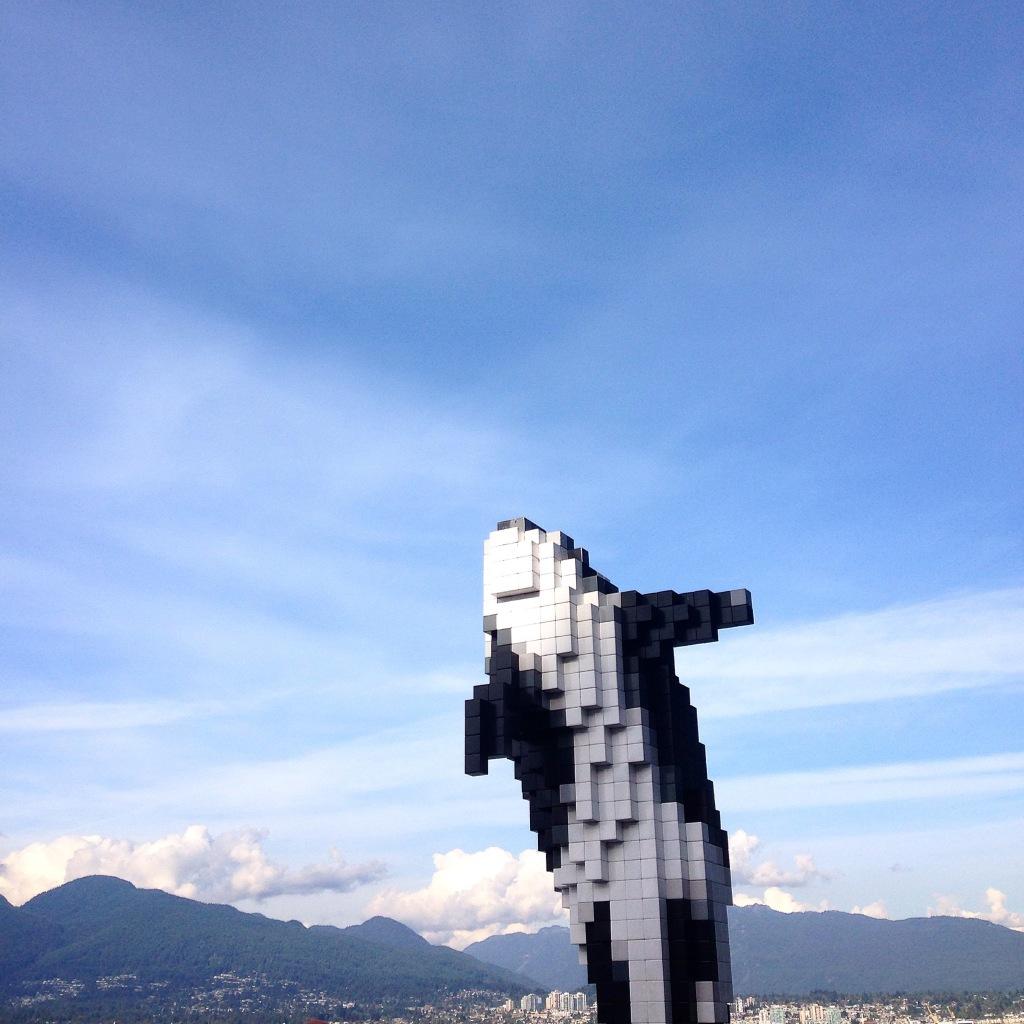 8-bit orca - Vancouver, BC